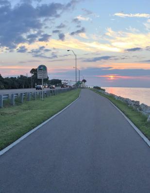 Forward Pinellas Adopts the 2020 Transportation Improvement Program